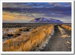 arco desert