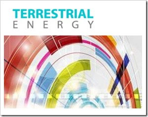 trerrestrial energy logo