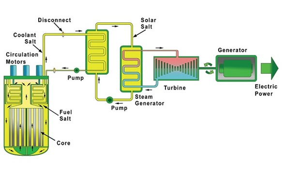 terrestrial_energy_system_layout_0