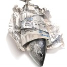 fish-in-newspaper2