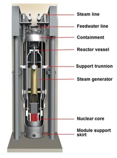 nuscale reactor cutaway