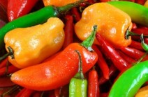 colored-hot-peppers-300x199