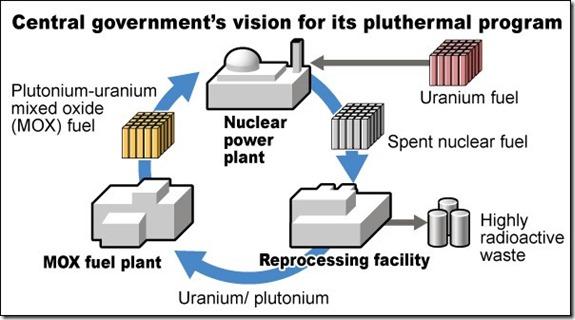 Japan pluthermal program