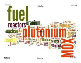 mox-fuel-word-cloud